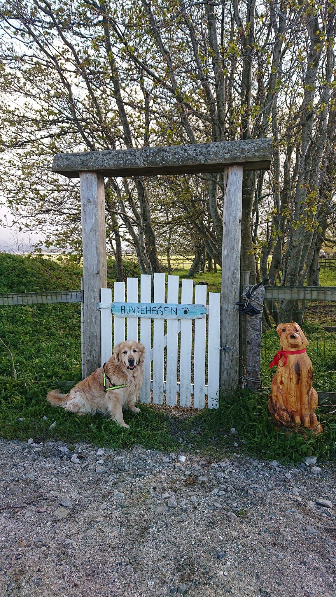 Hundehagen / area for dogs
